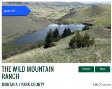Wild Mountain Ranch online auction