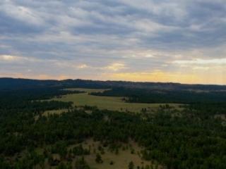 Timber Bull Ranch