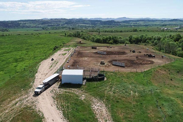Neal Ranch - Feedlot Tracts