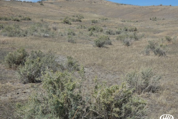 Large Acreage With Big Sky Views And Easy Access