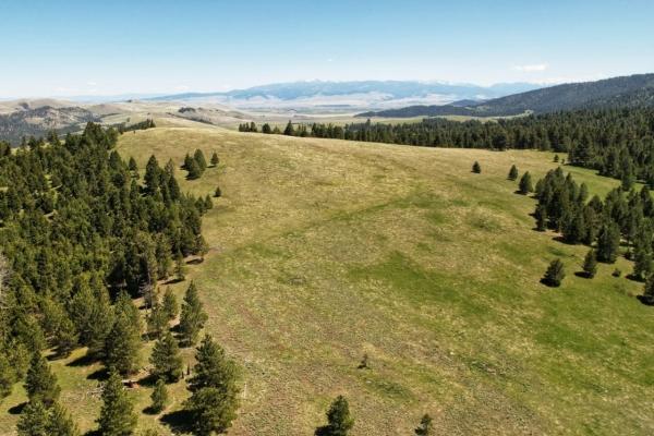 Bull Mountain Elk Camp
