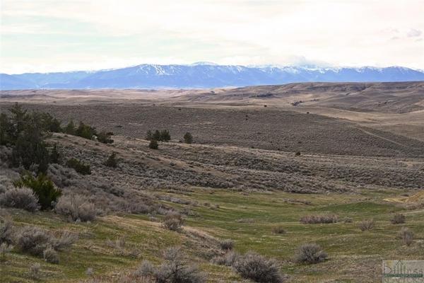 Prairie Wildlife Homestead
