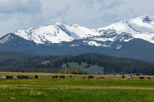 Skinner Meadows Ranch