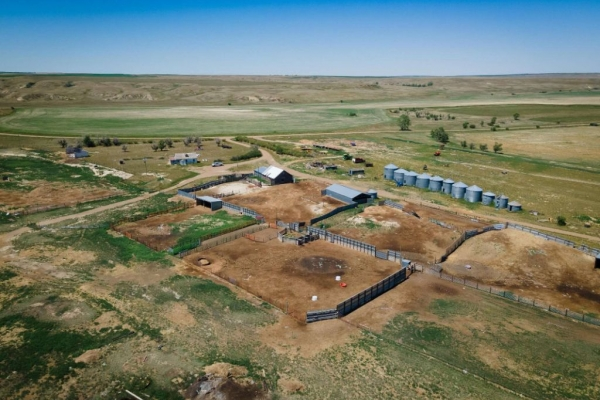 Hall's Redwater Ranches