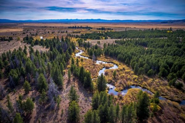 Arrow Ranch