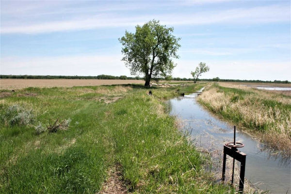 Willow Creek/Old Milk River Farm