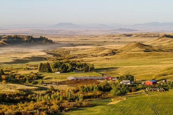 IX Ranch