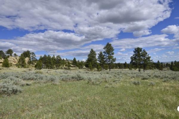 Pastureland with Abundant Wildlife and BLM Lease Option