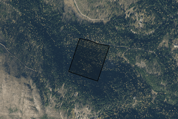 Map of Beaver Creek Road: 20.02 acres SW of Seeley Lake