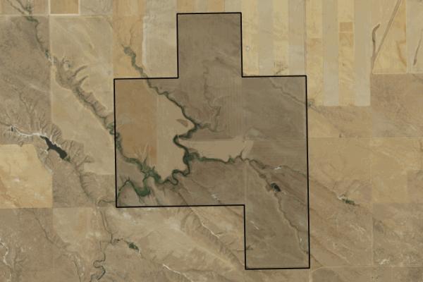 Map of Online Auction - Rimrock Grains Land: 1280 acres NE of Winnett