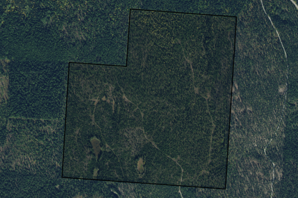 Map of Sky View Ranch: 301.62 acres NW of Whitefish