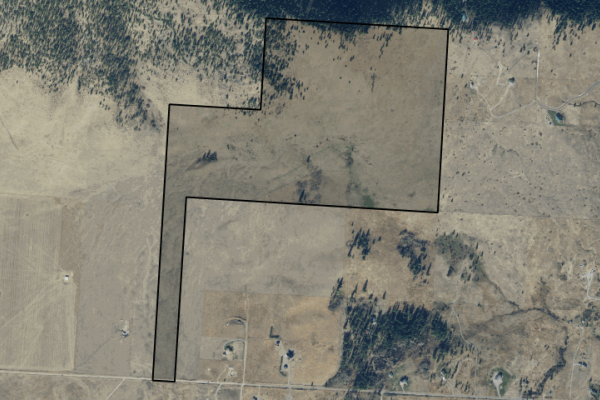 Map of Walking Horse Lane: 219.55 acres West of Big Arm