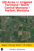 Online Auction - 320 Acres +/- Irrigated Farmland
